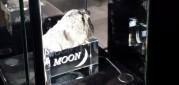 Kolik stojí kus Měsíce a kde ho lze v Praze koupit?