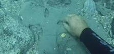 Amatérský potápěč našel poklad v hodnotě 24 milionů korun